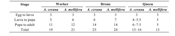 cerana_mellifera_tabelle
