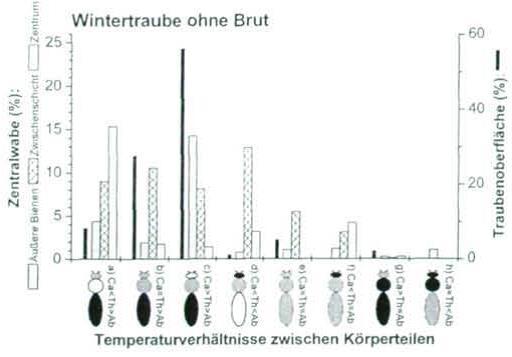 ArtikelRegulationTemperatur_etc.Temperaturverhältnissezwischen-Körperteilen